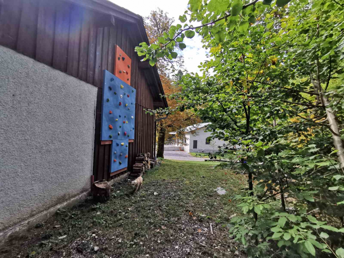 Lokacija: Notranjsko - kraška, Cerknica, Cerknica