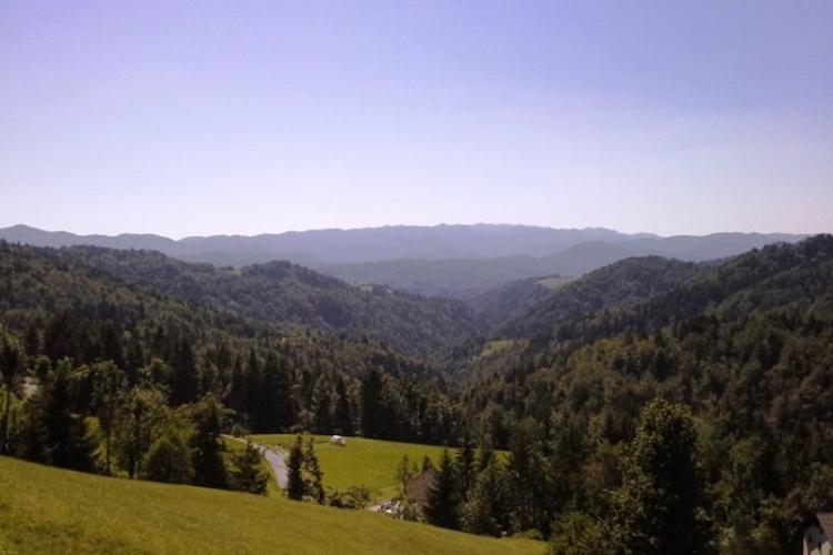 Lokacija: Ljubljana okolica, Logatec, Medvedje Brdo