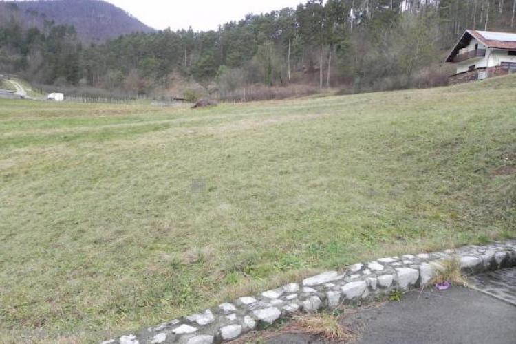 Lokacija: Notranjsko - kraška, Postojna, Planina