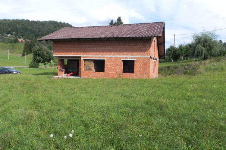 Lokacija: Notranjsko - kraška, Loška Dolina, Babno Polje