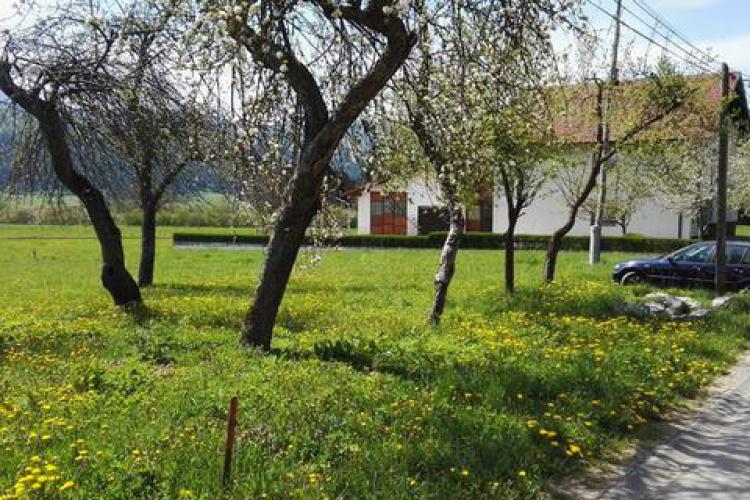 Lokacija: Notranjsko - kraška, Loška Dolina