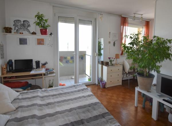 Lokacija: Ljubljana mesto, Šiška, Šiška