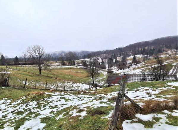 Lokacija: Jugovzhodna Slovenija, Kočevje, Morava