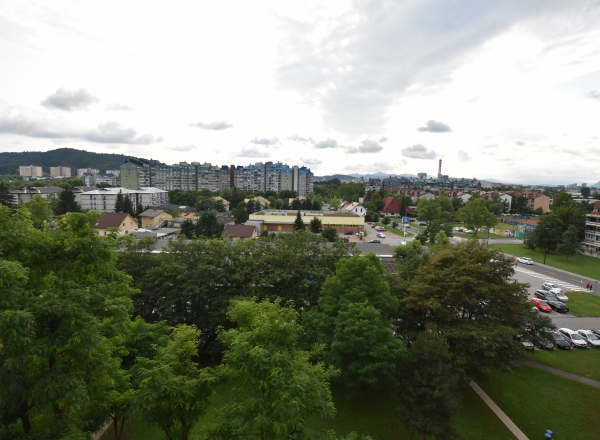 Lokacija: Ljubljana mesto, Moste-Polje, Fužine