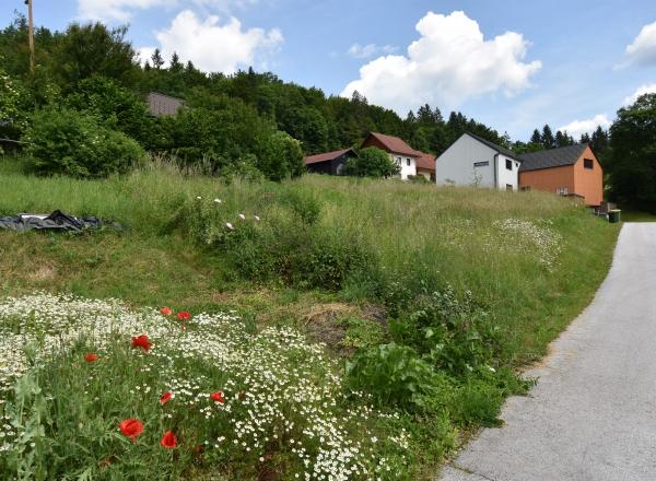 Lokacija: Ljubljana okolica, Grosuplje, Št. Jurij
