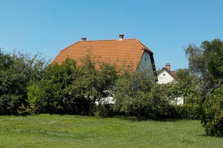 Lokacija: Podravska, Gorišnica