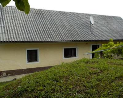 Location: Drava Statistical Region, Videm
