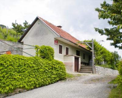 Lokacija: Podravska, Podlehnik, Zgornje Gruškovje