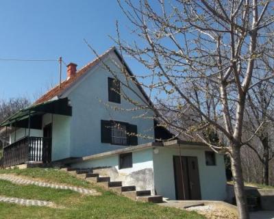 Location: Drava Statistical Region, Zavrč