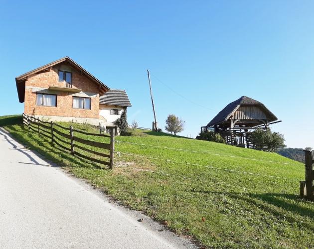 Lokacija: Podravska, Podlehnik