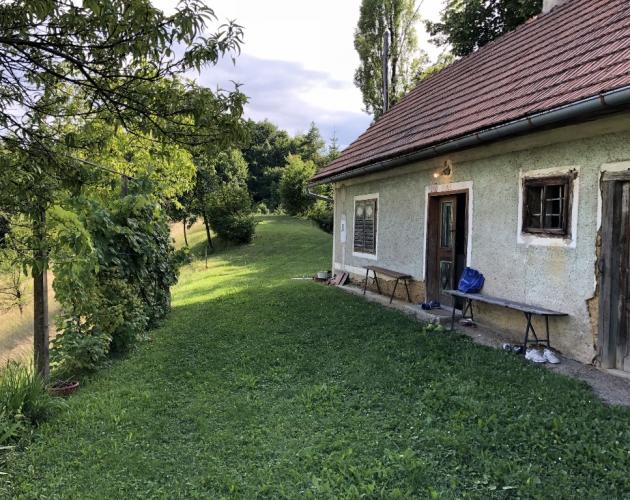 Lokacija: Podravska, Videm