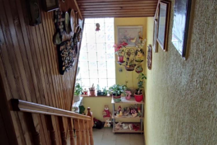Location: Inner, Pivka