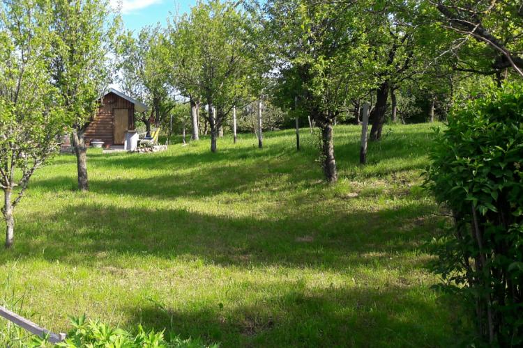 Lokacija: Notranjsko - kraška, Pivka
