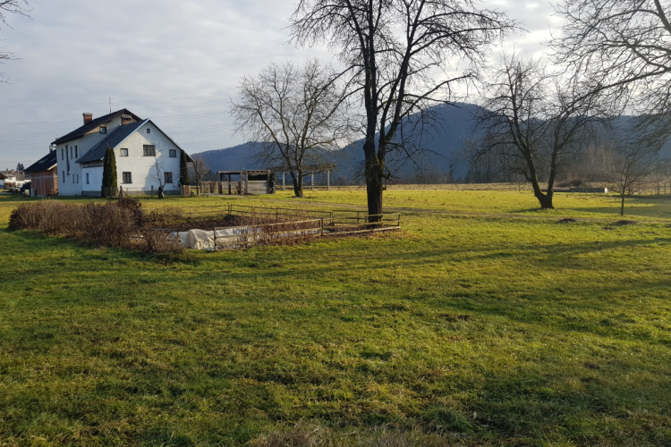 Location: Upper Carniola, Škofja Loka