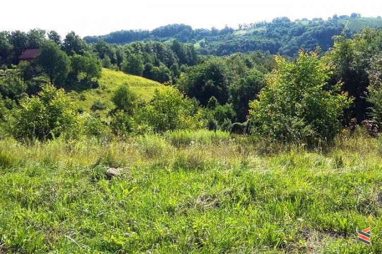 Lokacija: Podravska, Pesnica, Spodnje dobrenje