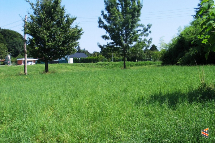 Lokacija: Podravska, Lenart, Spodnja voličina