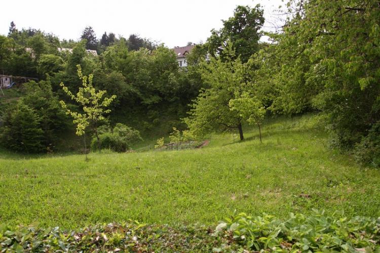 Lokacija: Ljubljana okolica, Vrhnika