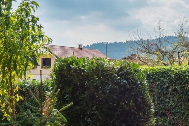 Lokacija: Ljubljana okolica, Log-Dragomer, Dragomer
