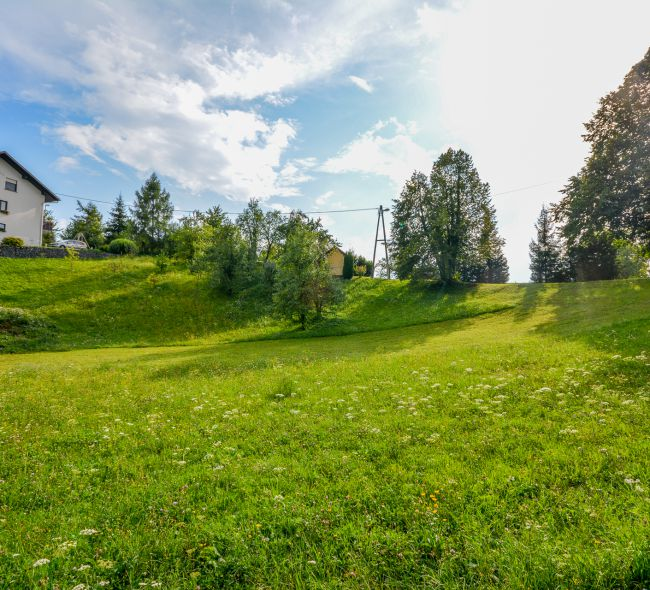 Lokacija: Ljubljana okolica, Ig, Sarsko
