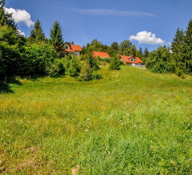 Lokacija: Ljubljana okolica, Dobrepolje, Videm