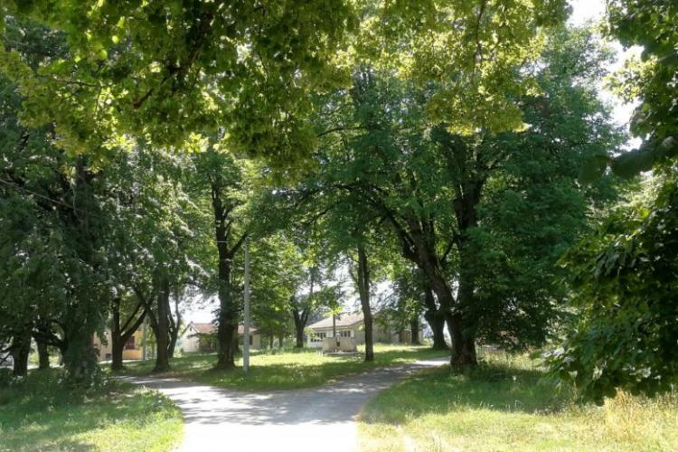 Lokacija: Hrvaška, Otočac