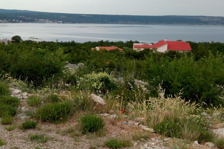 Lokacija: Hrvaška, Jasenice