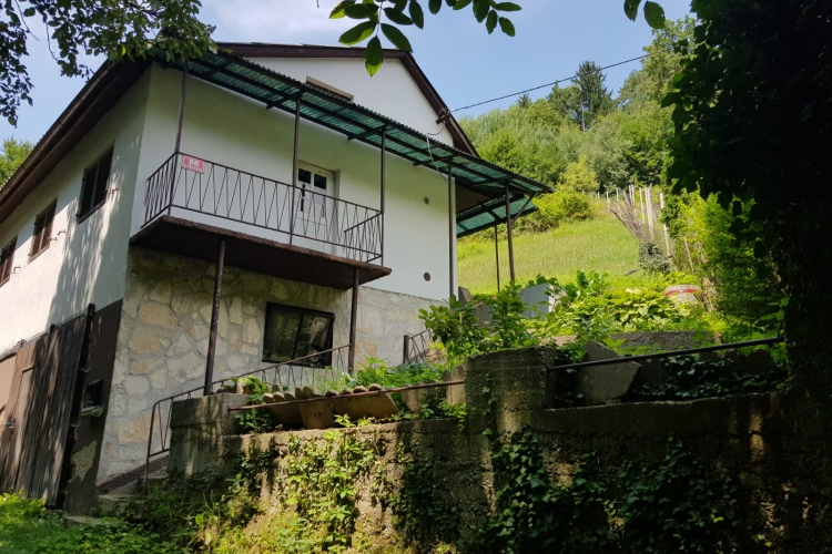 Lokacija: Podravska, Maribor, Laznica