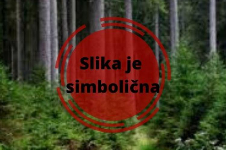Lokacija: Jugovzhodna Slovenija, Črnomelj, Grič pri Dobličah