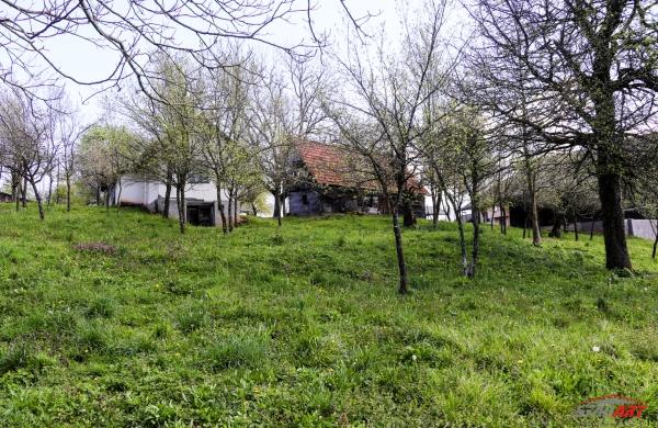 : Jugoistočna Slovenija, Črnomelj, Bojanci