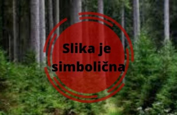 : Jugoistočna Slovenija, Črnomelj, Grič pri Dobličah