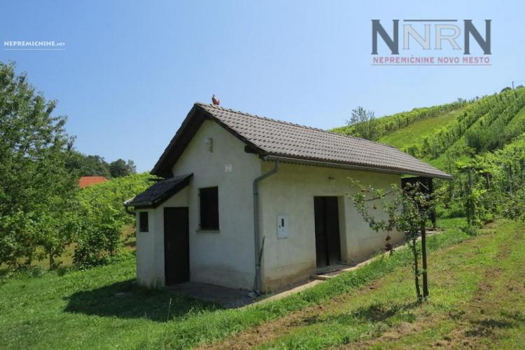 Lokacija: Spodnjeposavska, Kostanjevica na Krki