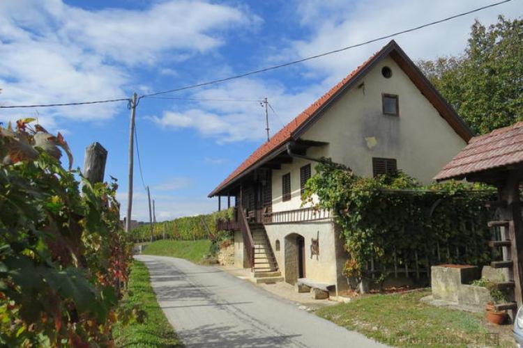 Lokacija: Jugovzhodna Slovenija, Metlika