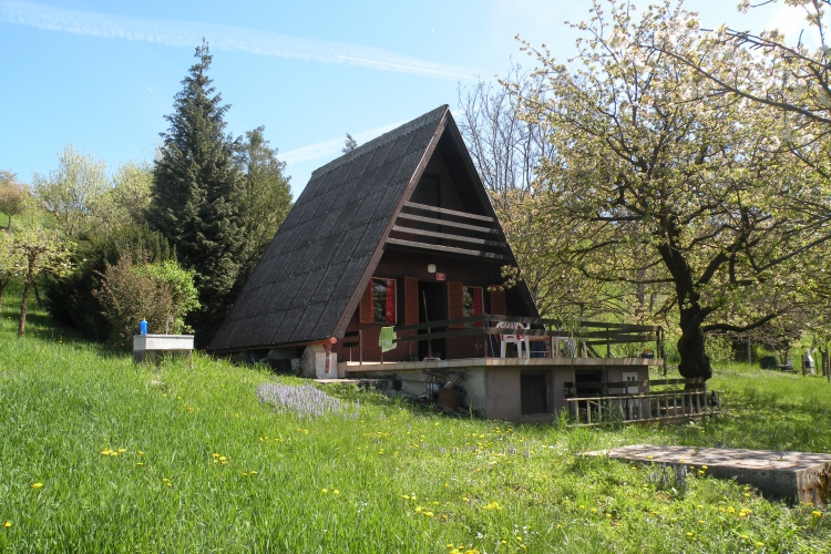 Lokacija: Podravska, Pesnica, Jelenče