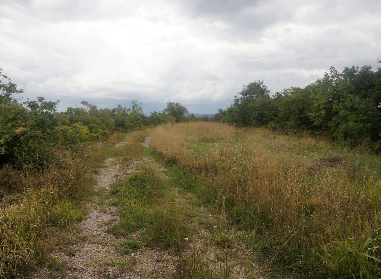 Lokacija: Obalno - kraška, Koper, Zgornje Škofije