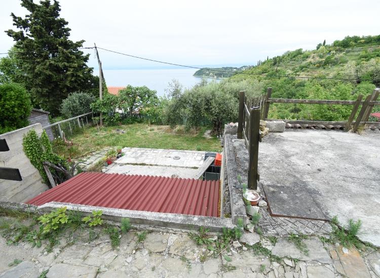 Lokacija: Obalno - kraška, Piran, Pacug