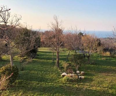 Lokacija: Obalno - kraška, Koper, Barizoni