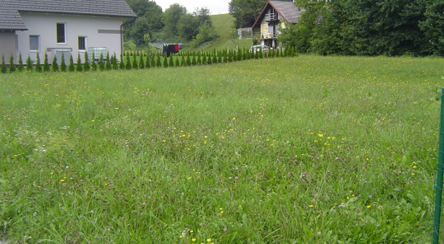 Lokacija: Podravska, Lovrenc na Pohorju