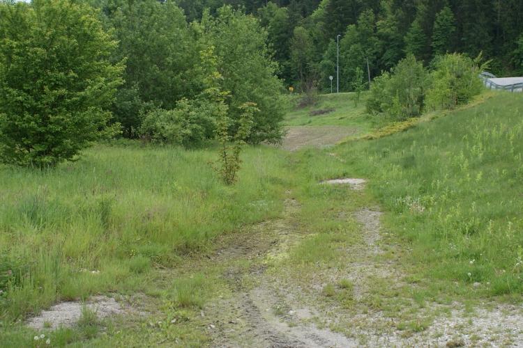Lokacija: Podravska, Ruše