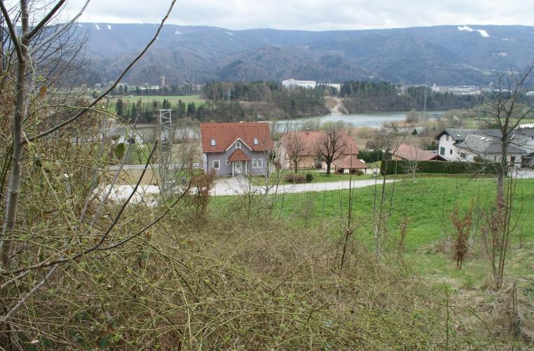 Location: Drava Statistical Region, Selnica ob Dravi