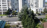 Location: Ljubljana city, Bežigrad, Bežigrad