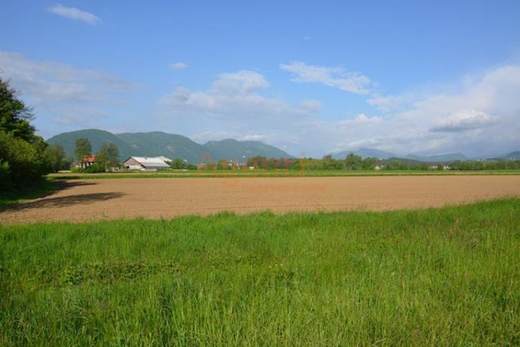 Lokacija: Savinjska, Slovenske Konjice