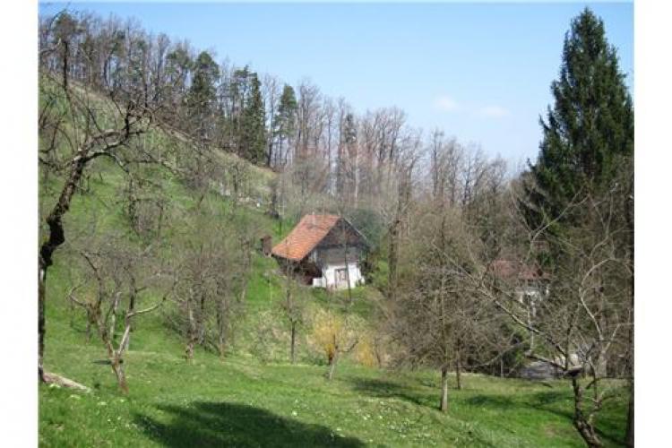 Lokacija: Savinjska, Braslovče