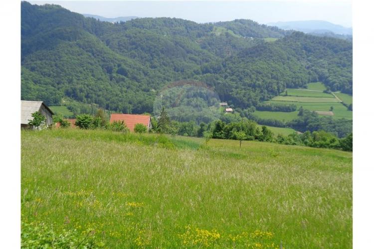 Lokacija: Savinjska, Rogatec