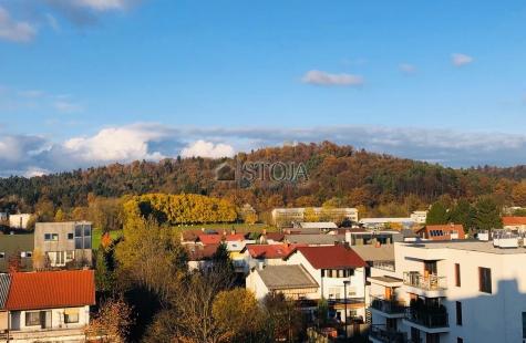 Ljubljana, Vič-Rudnik, Oddaja, Stanovanje, 3-sobno, 101 m<sub>2</sub>, 2002